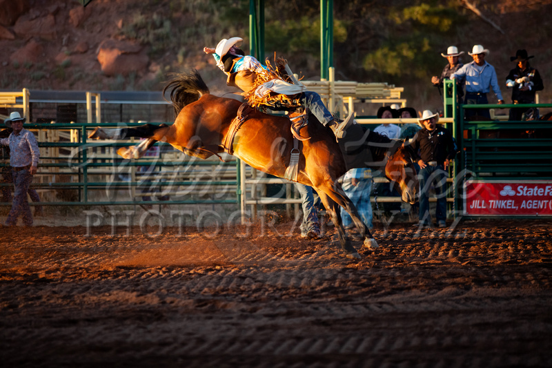 Wild Amp Free Photography Az Rodeo Barrel Racing And
